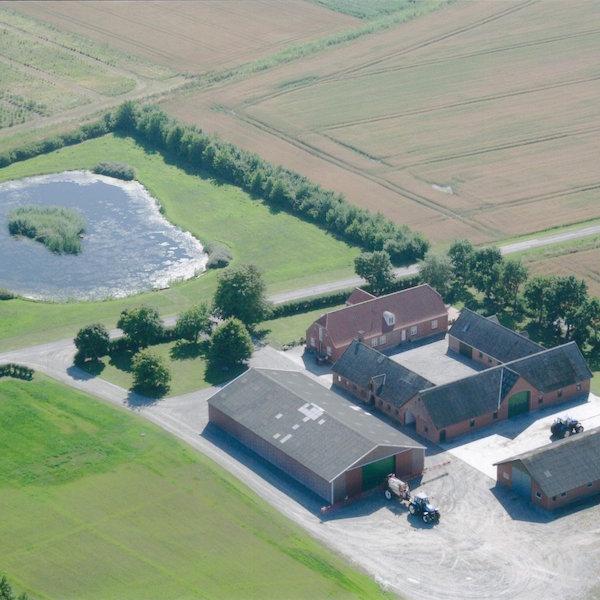 ackerbaubetrieb 166 ha in nord d nemark agrarimmobilien acker wald und wiese. Black Bedroom Furniture Sets. Home Design Ideas